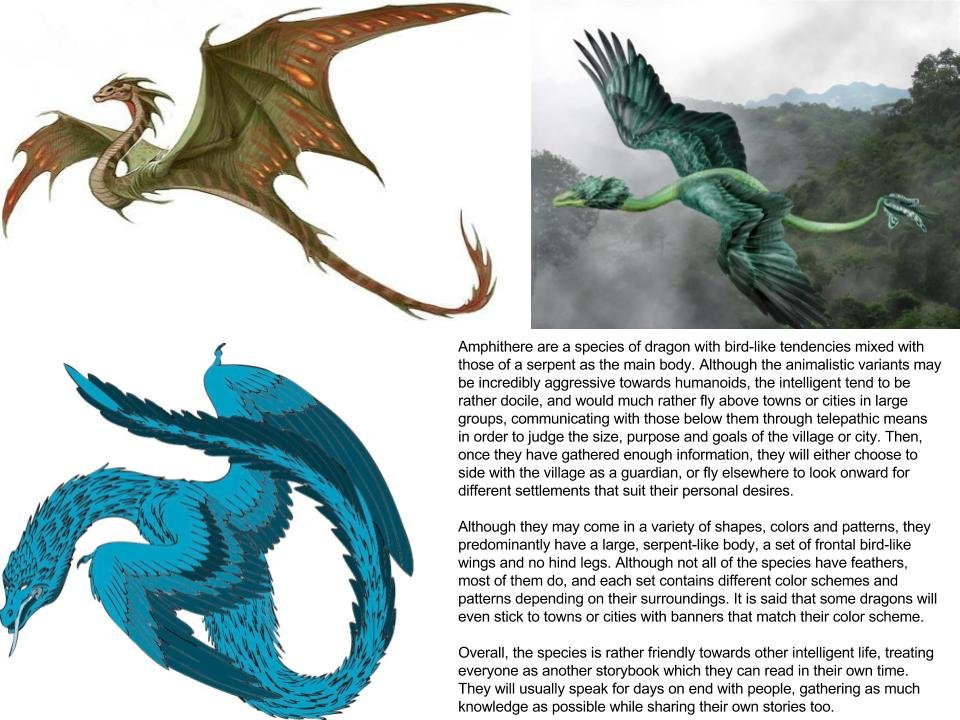 Amphithere (Dragon subspecies)
