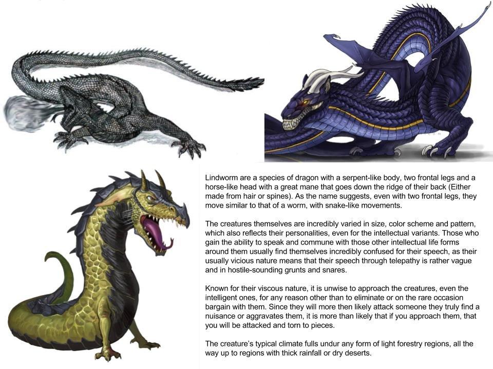 Lindworm Dragon: Lindworm (Dragon Subspecies)