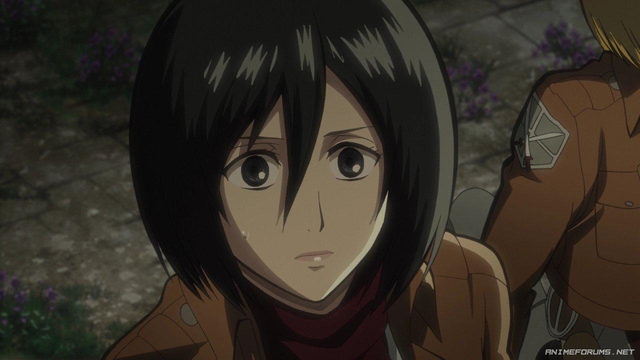 Mikasa Ackerman - Image 13