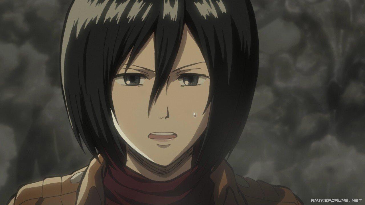 Mikasa Ackerman - Image 14