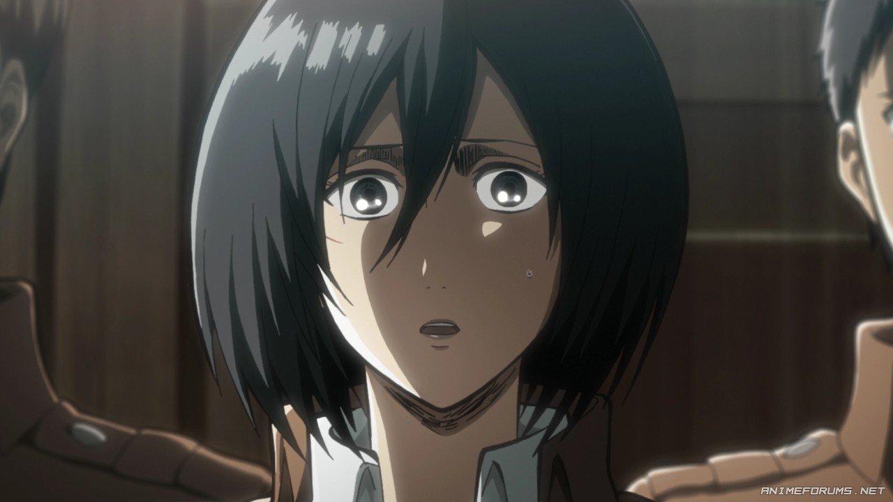 Mikasa Ackerman - Image 45