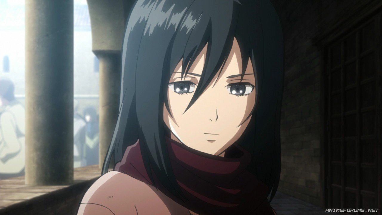 Mikasa Ackerman - Image 57
