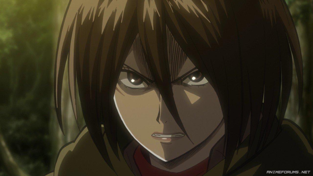 Mikasa Ackerman - Image 68