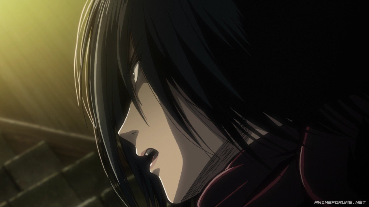 Mikasa Ackerman - Image 90