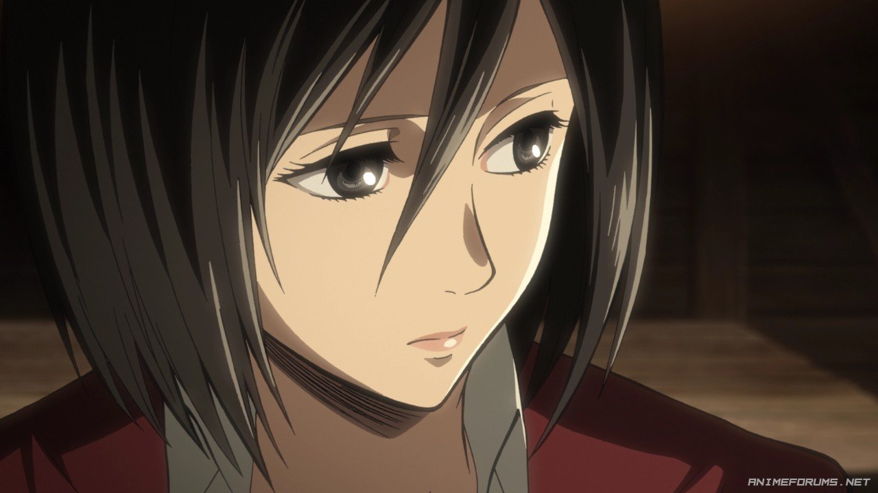 Mikasa Ackerman - Image 125