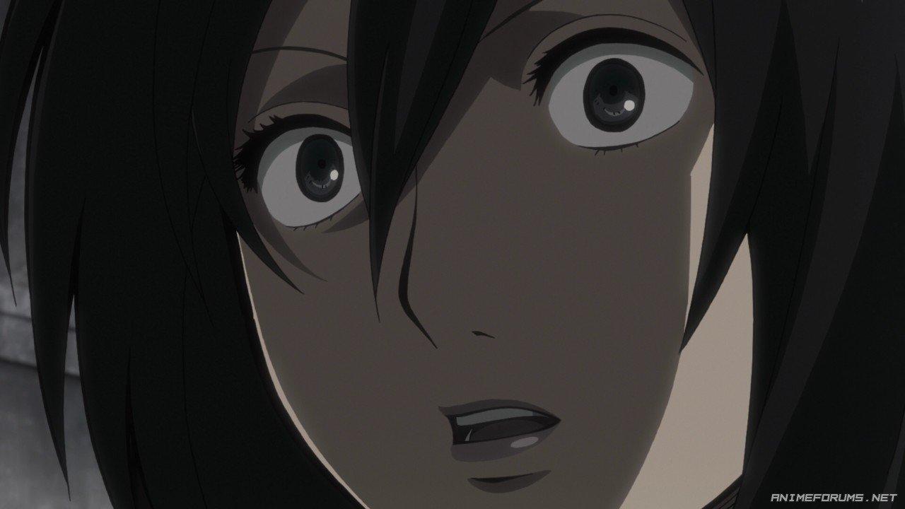Mikasa Ackerman - Image 132