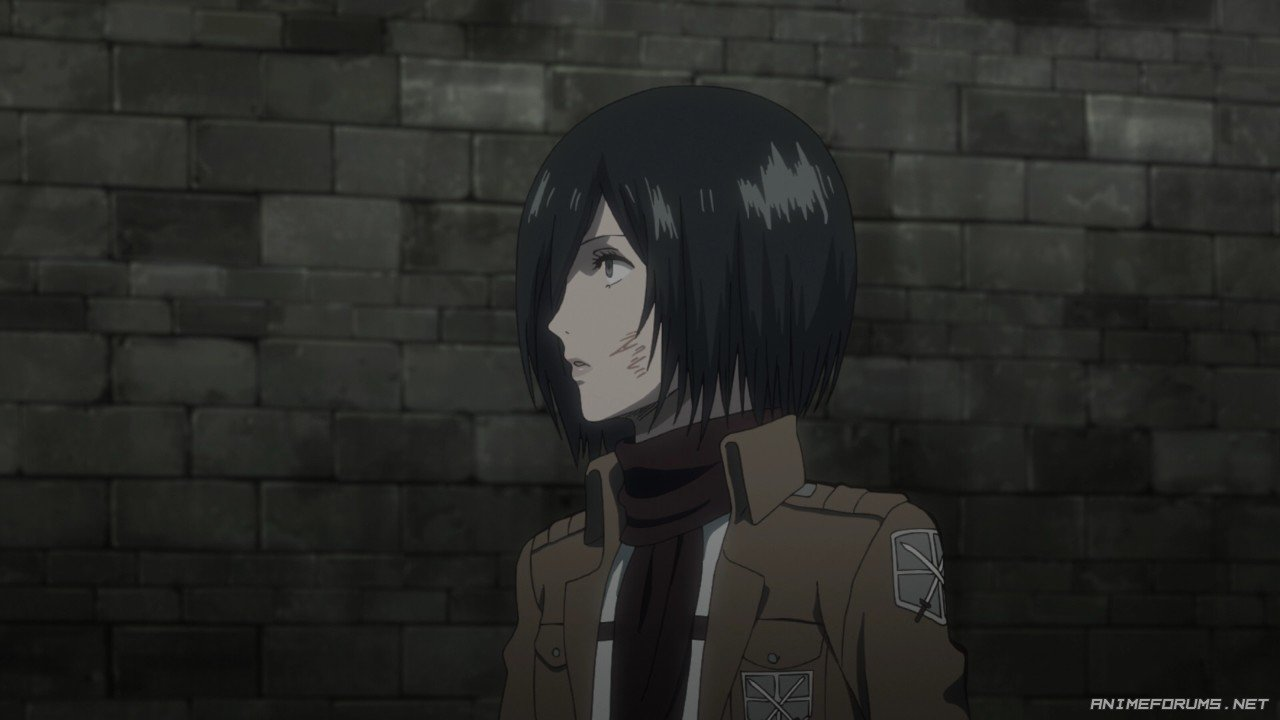 Mikasa Ackerman - Image 175