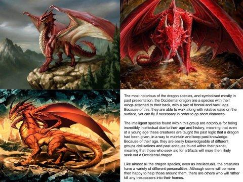 Occidental Dragon (Dragon subspecies)