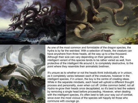 Hydra (Dragon subspecies)